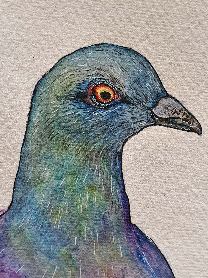 Waterverf schilderij kelten keltische maandvogel astrologie vogel duif