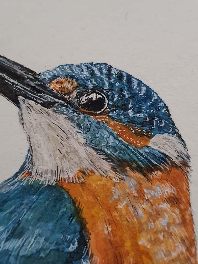 Waterverf schilderij kelten keltische maandvogel astrologieijsvogel vogel