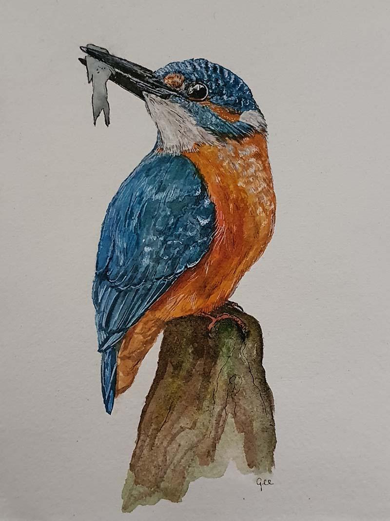 Waterverf schilderij kelten keltische maandvogel astrologie ijsvogel vogel