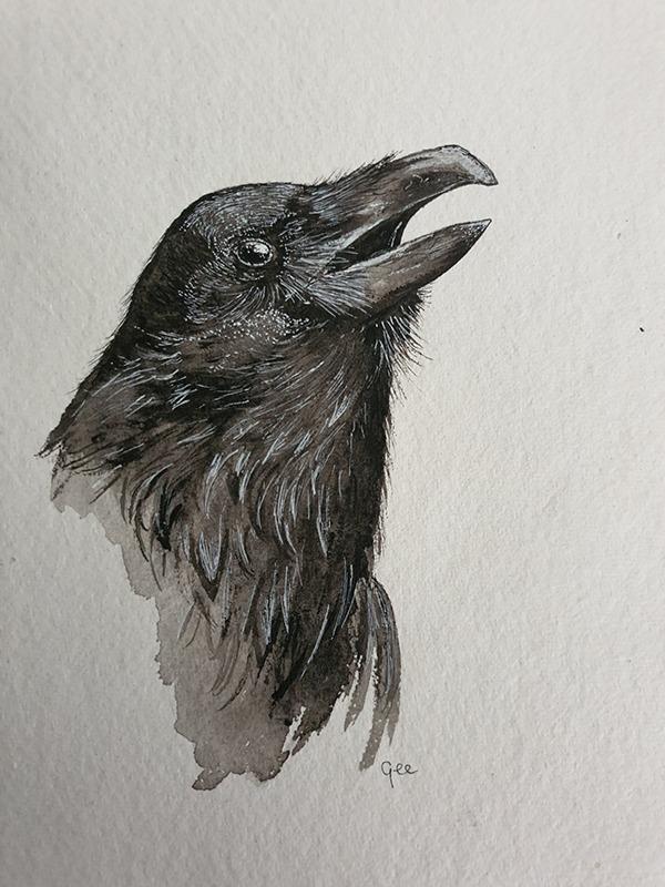 Maandvogel astrologie keltisch kelten waterverf ontwerp design vogel raaf