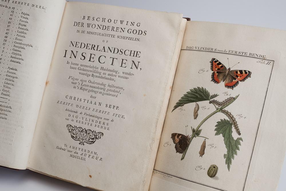 Beschouwing_der_wonderen_Gods_in_de_minstgeachtte_schepzelen._Of_Nederlandsche_insecten