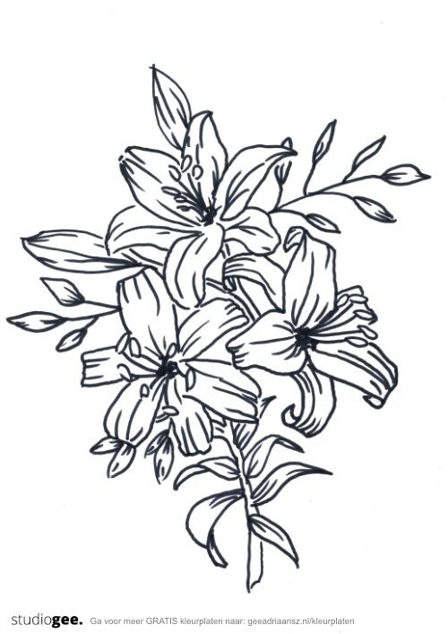 Kleurplaat Bloemen 2 web