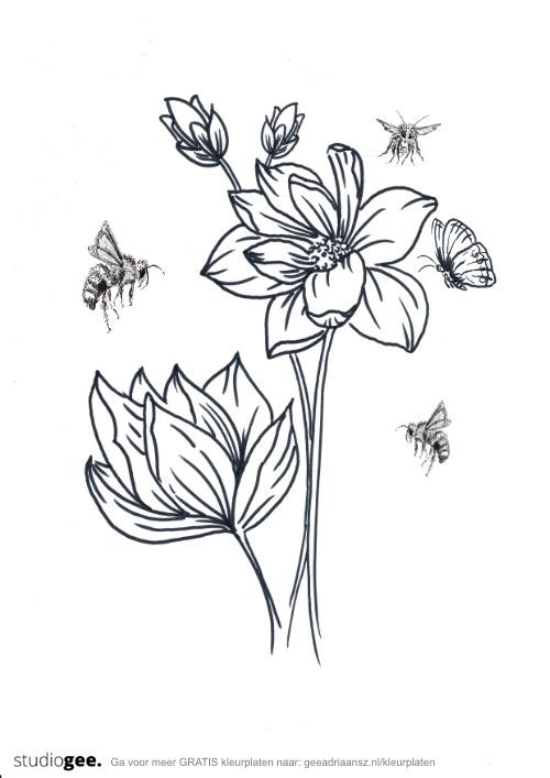 Kleurplaat Bloemen Bijen Vlinder web