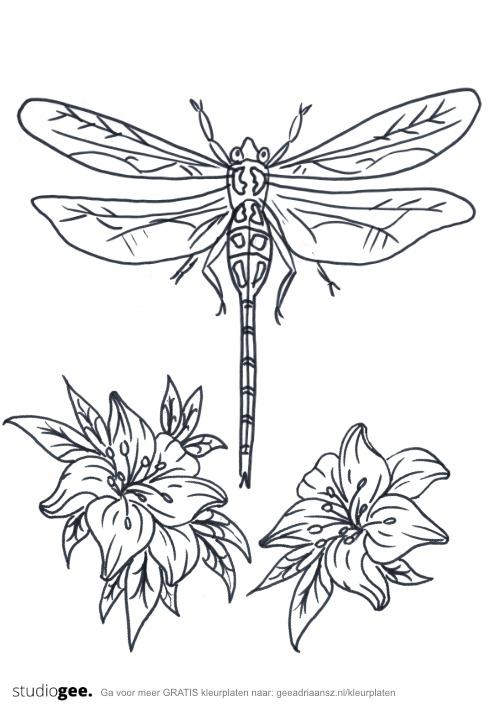 Kleurplaat Bloemen Libelle web