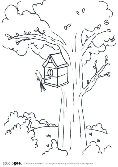 Kleurplaat Boom Vogelhuis web