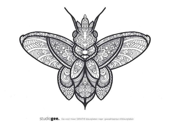 Kleurplaat Koningin Vlinder