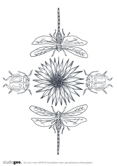 Kleurplaat Libellen Kevers Bloem