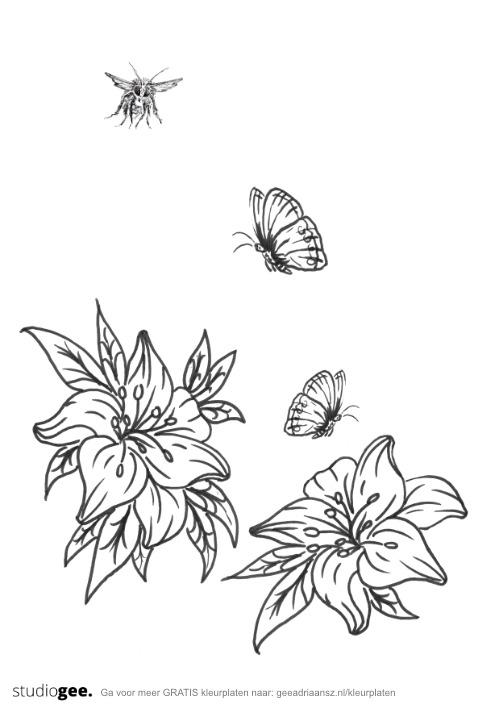 Kleurtplaat Bloemen Vlinders Bij web