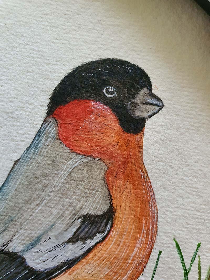 Waterverf schilderij kelten keltische maandvogel astrologie vogel goudvink