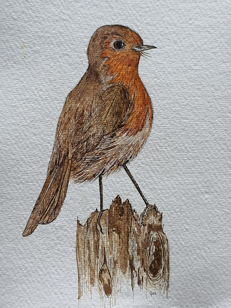 Waterverf schilderij kelten keltische maandvogel astrologie vogel roodborst